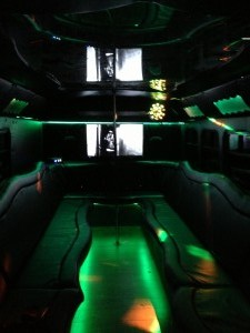 20 Passenger Party Bus